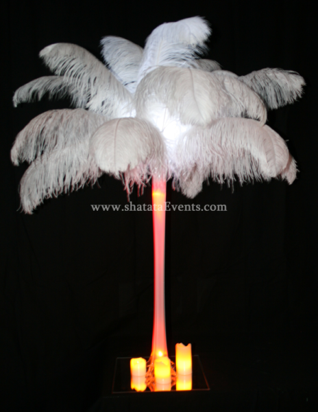 Shatata rent ostrich feather and led centerpiece in
